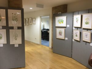 Reinhild's paintings in reception