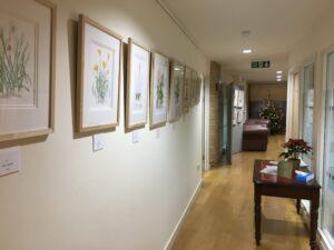 Reinhild's paintings in the corridor